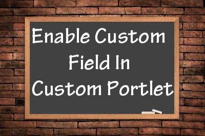 Enable-Custom-Field-in-Custom-Portlet